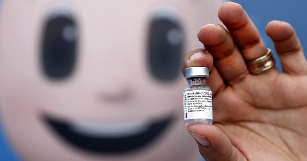 Vacuna Pfizer es segura para niños de entre 5 y 11 años, asegura el laboratorio