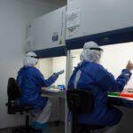 Vacunación covid: Creatividad con herramienta para detectar variantes, metas, cifras y más noticias de salud en Caldas